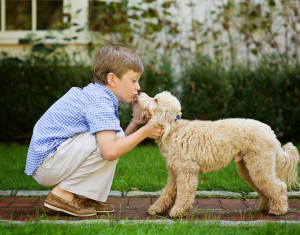 Photos Boy And His Dog Are
