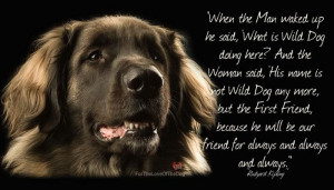 Quotes About Dogs Being Best Friends Dogs really are man's best
