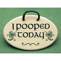 irish-sayings-new-for-st-patricks-day-i-pooped-today-with-irish ...