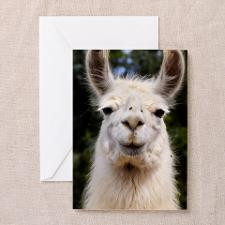 White Llama Greeting Card for