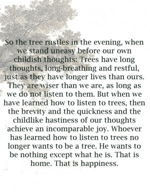 Tree with Hesse Quote by Anne Corr