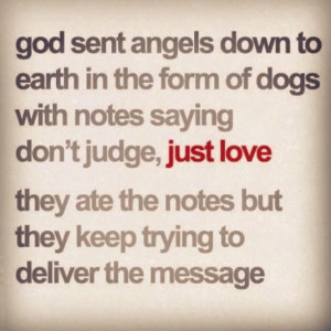 Dogs Are Angels Pictures, Photos, and Images for Facebook, Tumblr ...