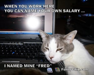Funny Salary Day Quotes With Images And ...
