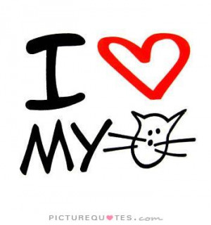 my favourite cat photo of the i love my cat quotes i love my cat