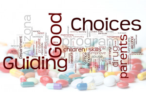 Guiding Good Choices Credited