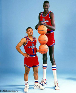 Funny Quotes Muggsy Bogues Manute Bol 600 X 743 134 Kb Jpeg