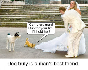 Man's best friend funny image