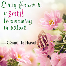 Awesome Quotes and Sayings About Flowers