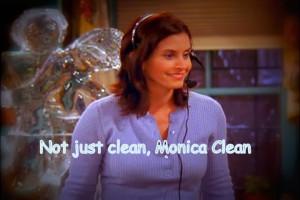 Monica-Geller-TOW-Phoebe-s-Wedding-10-12-monica-geller-9885841-720-480 ...