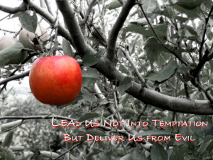 And lead us not into temptation, but deliver us from evil ...