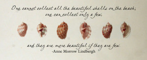 Quotes About Seashells