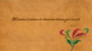 of-wisdom-is-to-discriminate-between-1920x1080-wisdom-quote-wallpaper ...