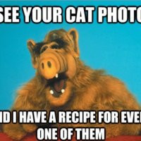 Alf Cat Meme