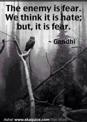 Fear causes immobility