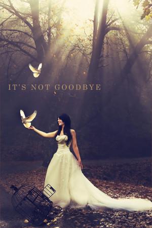 It's Not Goodbye by NoorL3yoon