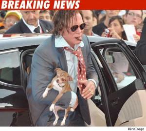 ... for http://ll-media.tmz.com/2009/02/17/0218_mickey_rourke_dog_bn-1.jpg