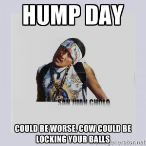 san juan cholo - HUMP DAY COULD BE WORSE. COW COULD BE LOCKING YOUR ...