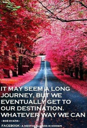 Life can be a very long journey quotes