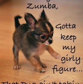 Happy Birthday Zumba Quotes. QuotesGram
