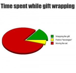 funny-picture-gift-wrapping-cat