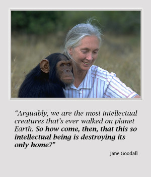 jane goodall quote 2 New Films: Occupy Love And Surviving Progress