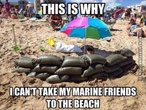 funny picture marine friends at the beach