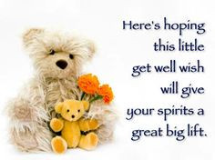 Sweet Get Well Sayings   Get Well Plant and Get Well Wishes ! More