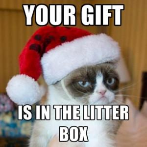 Grumpy Cat Christmas Quotes Grumpy Cat Quotes Christmas