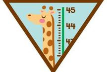 Girl Scout Brownie Badges Ideas