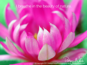 in art flowers healing inspirational gifts inspirational quotes ...