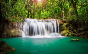 Waterfall in the rainforest wallpapers and images
