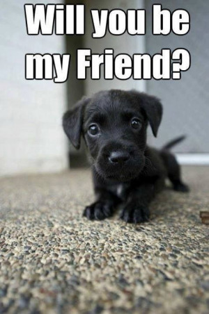 ... Christian Quotes, Christian Friendship Quotes, My Friends, Puppies