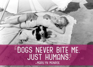 Cool Quotes That Will Make You Appreciate Your Pets (21 pics)
