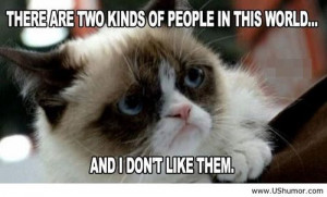 Grumpy cat august 2013 US Humor - Funny pictures, Quotes, Pics, Photos ...