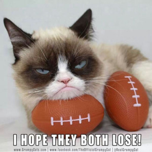 Super Bowl. Grumpy Cat.