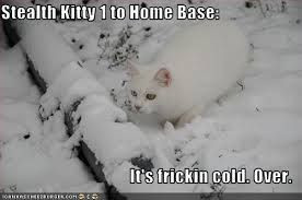 cold weather funny quotes