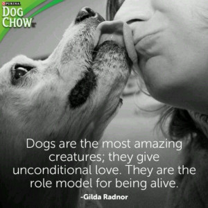 Dogs-- unconditional love.