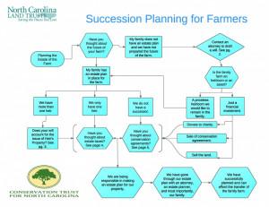 Planning Succession Leadershp Development Picture