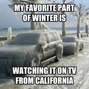 funny-picture-winter-snow-ice-frozen-car