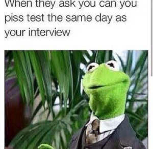 Re: Funny Kermit The Frog Memes by lomaxx : 7:50am On Jul 06 , 2014