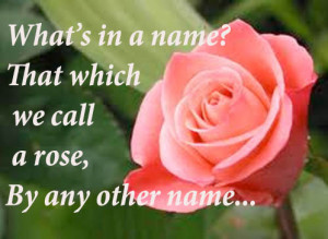 Best Shakespeare Quote, a rose by any other name