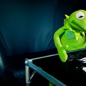 Related Pictures 2560x1600 kermit the frog 1920x1200 wallpaper ...