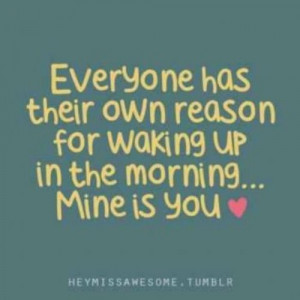 Mineisyours Pinquotes