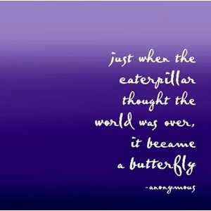 Butterfly quotes and sayings image by kiwi8298 on Photobucket