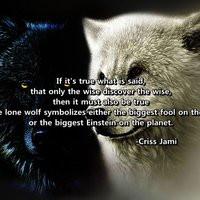 wolf quotes photo: Lone Wolf LoneWolf_zpse8060d6b.jpg