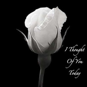 White Rose Pictures with Love Quote