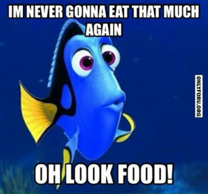 never gonna eat that much again ... oh look food!