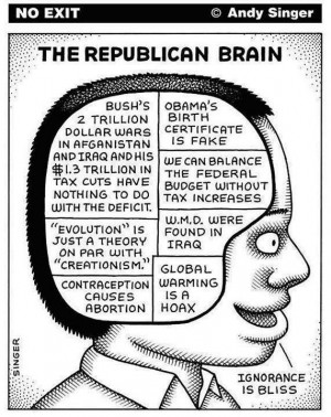 The Last Word On Conservative Brain Structure