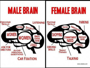 Funny Pictures-Male Brain and Female Brain