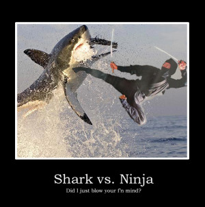 Ninja Day 2010 is stealthily creeping up on us…
